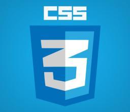 css's logo